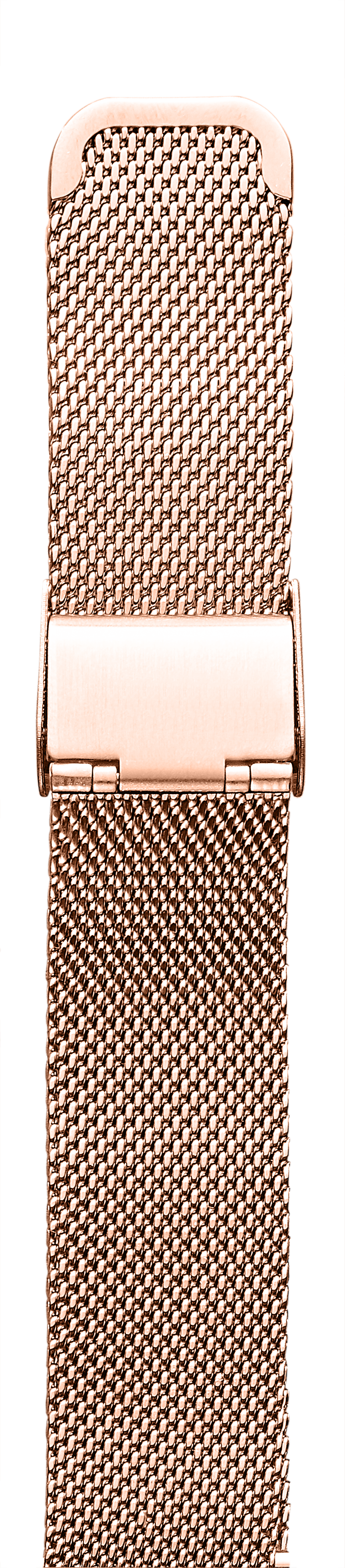 ROSE GOLD W/ BUCKLE