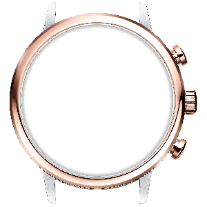 STAINLESS STEEL / ROSE GOLD